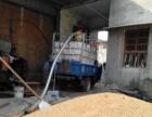 专业制造粮食输送设备 车载吸粮机 马达汽油机 颗粒上料机