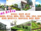 园林式机关l厂区 自然风休闲l绿墙 花卉租摆 重庆海乐食农业