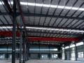 沌口西常福全配套高标准5000平钢构厂房