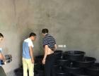 重庆肯卓农业土元养殖基地长年供种,提供技术,回收