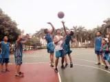 野马篮球训练营招募中