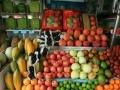 绵阳水果配送服务