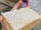 蜂巢蜜 500g野生农家自产巢蜜纯正蜂蜜