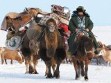 北京至全国长途代驾 旅游代驾 长途送车 取车 跑腿