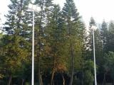 长汀户外安装埋地球场灯杆/中山室外球场灯