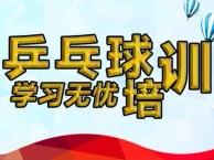 江汉区青年路泰合花园附近乒乓球培训班,零基础培训热招中