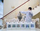 杭州创绿家专注室内空气治理-甲醛检测治理-除醛率高达99%