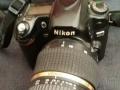 尼康d80配滕龙17-50MM镜头