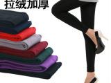 春秋季新款 韩国时尚加厚女士打底裤保暖裤拉绒裤低价批发