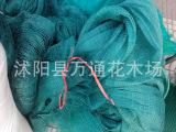 批发塑料养鸡网 塑料网 围栏网鸡网 养殖网 3.5厘米24股 结