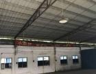 九洲基星棚厂房1100方,适合各行业