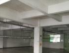 会展中心 独院厂房5200平方 空地大