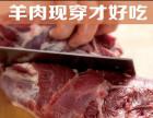 丰茂烤串 专注烤串26年 羊肉现穿才好吃