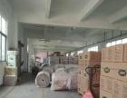 惠阳淡水独院1300标准厂房出租