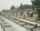 青岛龙山公墓 清明墓地大优惠鳌山墓地