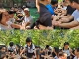 广州组织班级秋游亲子秋游的好地方帽峰山生态园