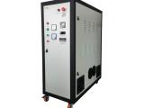 珍澳水冷制氧臭氧发生器ZA-YT30G