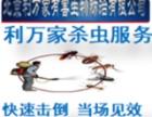 北京区域除蟑螂 灭老鼠 除虫灭虫服务