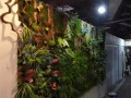 北京绿植墙定做植物墙设计草墙花墙立体背景墙图片价格