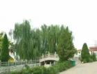 龙居山、飞凤岭陵园