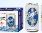 广东地区百威拉罐啤酒招商加盟