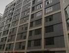 房东直租标准工业厂房