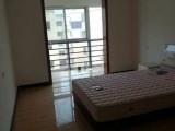 出租文博鑫城3房2厅2位2张大床新床垫新厨房/天燃气拎包入住文博鑫城