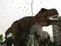 冰雕展水上乐园变形金刚恐龙科技展雨屋镜子迷宫灯光节