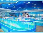 开封儿童游泳池 萌贝湾