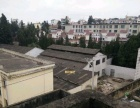 下酒厂小区(新街子对面) 仓库 200-500平米