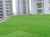 南通人造草坪网厂家
