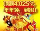鑫福年年护财利器