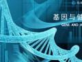 有1健康丨基因加测 健康行业的下一个风口