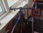 山地自行车9.9成新