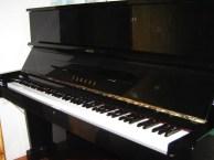 钢琴电子琴声乐舞蹈学校