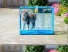 九九成新加粗加密型宠物笼子