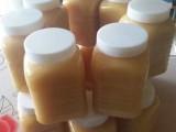 云南林城生物蜂子口碑好,多年专业经营市场