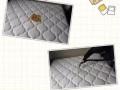 专业清洗布艺沙发清洗、办公座椅、床垫清洗、消毒除螨