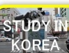 云兮教育 韩语专项考级班 零基础/提升口语集训