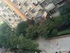 湘潭-新府华城新装修单身公寓1室1厅-1200元