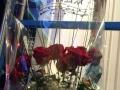 阳江市江城区阳东区生日蛋糕鲜花开业花篮预定送货上门