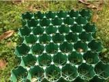 天津滨海新区植草格价格怎样选择