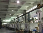 常平上坑新推出800平方米层高5米一楼厂房招租
