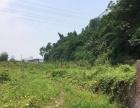 半山小区附近 土地 20000平米 可零租可整租