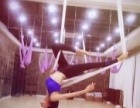 天津东丽金菲舞蹈瑜伽空中教培招生中