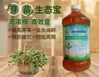 郑州益富源芽苗菜营养液益生菌提升口感提高发芽率
