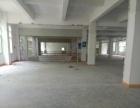 料坑新出700平米标准一楼厂房出租
