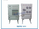 BXD51防爆动力配电箱BXD51