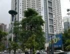 凤岭北拐角临街商铺 开发商招租无中介费 可做便利店