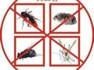 河北唐山灭蟑螂灭老鼠杀虫消杀公司